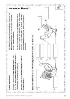 kohl verlag lernwerkstatt der baum als lebensraum material schule pinterest lernen. Black Bedroom Furniture Sets. Home Design Ideas