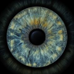 Eye Texture, Photos Of Eyes, Airplane Mode, Alternative Medicine, Eye Color, Unique Art, Clip Art, Sculpture, Prints
