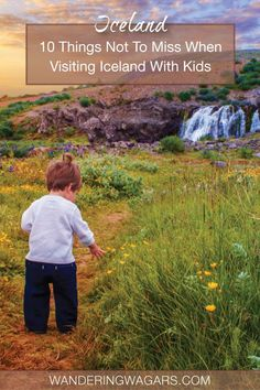 Travel Iceland - Check out these Iceland travel tips for parents visiting Iceland with kids. Where to go in Iceland with children and where to avoid. Cheap Travel Trailers, Travel Trailer Insurance, Car Insurance, Iceland Travel Tips, Europe Travel Tips, Travel Advice, Travel Ideas, Europe Budget, Travel Quotes