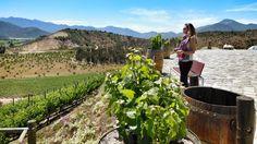 Guía de Turismo : Ruta del Vino, Valle Casablanca, Chile. http://turismoorinocoguide.blogspot.com/2014/07/tursmo-ruta-del-vino-valle-casablanca.html?spref=tw