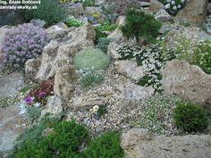Rock garden Small Garden, Xeriscape, Shade Garden, Backyard Garden, Rockery Garden, Garden Troughs, Mediterranean Garden, China Garden, Garden Stones