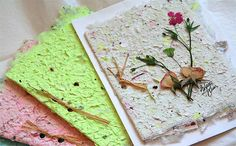Make your own cards out of pressed flowers - Canadian Gardening