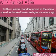 Horse vs car, which one is faster? better off walking - WTF fun facts