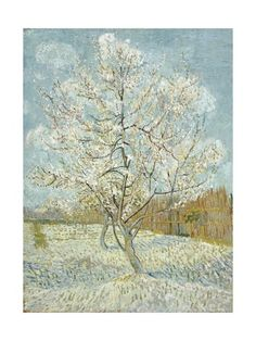 Vincent Van Gogh, Paintings and Prints at Art.com