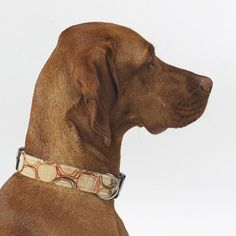 Dog Collar In Firenze Microvelvet - Size: Small $29.95