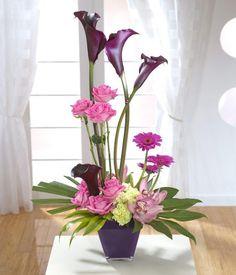 Bossa Nova - The Flower Shop