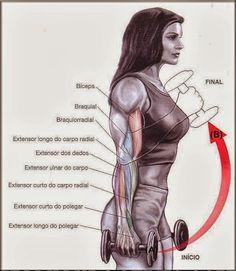 Que Tal Aprender Algo Novo Hoje? Descubra Passo a Passo Como Definir o Corpo! Clique Aqui ~> http://www.SegredoDefinicaoMuscular.com #Musculacao