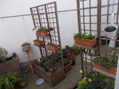 Blumenkübel - Bauanleitung zum Selberbauen - 1-2-do.com - Deine Heimwerker Community Plants, Tutorials, Projects, Plant, Planets