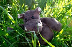 Hippo l'hippopotame en pleine exploration au milieu des hautes herbes. Courage Hippo, tu y es presque !