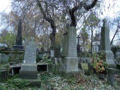 patrząc w jedną stronę: Cmentarz Ewangelicko-Reformowany