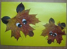 Cute fox face art
