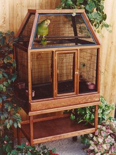 Here at Designer Aviaries we have been manufacturing decorativwe exotic bird cages for over 25 years. Every exotic bird cage is handcrafted in oak or cherry wood. Bird Cage Design, Diy Bird Cage, Cockatiel Cage, Parakeet Bird, Budgie Cages, Bird Cages For Sale, Large Bird Cages, Parrot Pet, Rabbit Cages