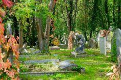 J'ai osé... me rendre sur la tombe de ma maman - La Gestalt comme philosophie de vie - www.sijosais.com