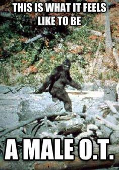 What is a Bigfoot? What if Bigfoot is an alien? What if Bigfoot is a spirit? What if Bigfoot is from another dimension? Paranormal, Ot Memes, Pie Grande, Finding Bigfoot, Bigfoot Sightings, My Champion, Military Humor, Military Life, Usmc Humor