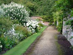 gardens at highclere castle. berkshire.  I would love to have a driveway lined like this, with two white concrete whippet statues at the front of the drive.