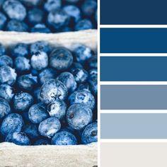 100 Color Inspiration Schemes : Blueberry Color Palette #colorscheme #color #bluecolor