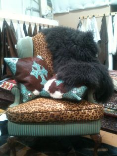 cowhide, and turquoise perfect i could get rid of the big black furry thing and the leopard Western Decor, Rustic Decor, Cowhide Decor, Western Furniture, Custom Furniture, Furniture Design, Into The West, Ranch Decor, Home On The Range