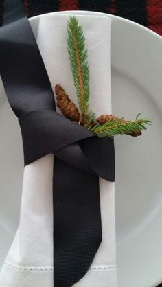 Linen and pine on white
