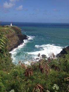 Kilauea Point National Wildlife Sanctuary in Kīlauea, Kauai, Hawaii Kilauea Lighthouse, Kauai Hawaii, Humpback Whale, Great View, Destinations, Wildlife, Island, Adventure, Water