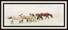 """The Graze"" Horse Art on Canvas"