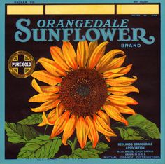 "RARE OLD ORIGINAL 1920s ""SUNFLOWER BRAND"" ORANGE CRATE LABEL REDLANDS CALIFORNIA | eBay"