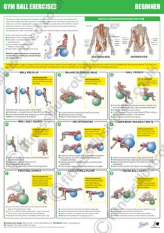 Fitness Illustrated - Instructional exercise illustrations from illustrator Matt Lambert Fitness Diet, Health Fitness, Muscle Fitness, Swiss Ball Exercises, 28 Day Challenge, Stability Ball, Calisthenics, Excercise, Exercise Ball
