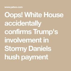 White House accidentally confirms Trump's involvement in Stormy Daniels hush payment Hush Hush, Donald Trump, House, Home, Donald Trumph, Haus, Houses