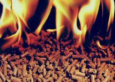 Galicia va por la biomasa on http://quenergia.com