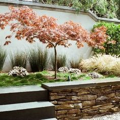 Designing Backyard Japanese Garden Design Ideas, Pictures, Remodel, and Decor