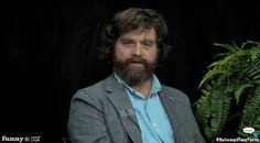 Zach Galifianakis' BETWEEN TWO FERNS - Oscar BuzzEdition - News - GeekTyrant