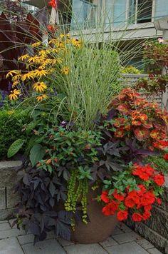Ideas para tus macetas   Cuidar de tus plantas es facilisimo.com