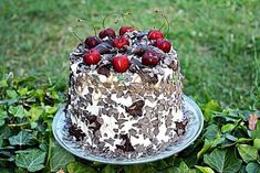Tort Padurea Neagra Romanian Food, Acai Bowl, Pudding, Breakfast, Desserts, Mariana, Acai Berry Bowl, Morning Coffee, Tailgate Desserts