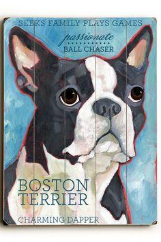 Boston Terrier by Pet Art Shop
