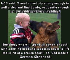 God Bless German Shepherds!