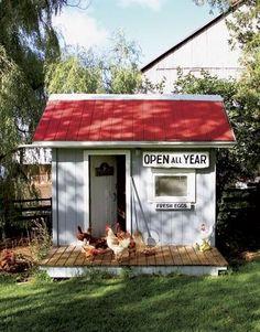 chicken coop love!