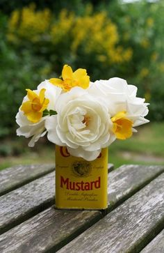 daffodils in a mustard tin box
