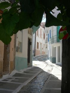 Alley in Kokkari village, Samos island, east Aegean sea, Greece Beautiful World, Beautiful Places, Samos Greece, Skiathos Island, Thasos, Vacations To Go, Greece Islands, Greece Travel, Countryside