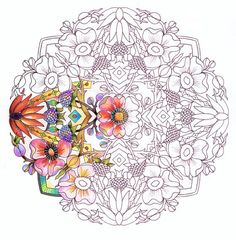 Image result for coloring book for adults pdf