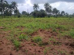 The plots are located along Atan road, Ado-Odo otta Local Government Area of Ogun State with coordinate: 730068.000MN, 501269.000ME.  Click on the image for full details  #realestate #property #land #forsale #Agbara #Ogun #Nigeria