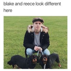 I see no difference. Blake Richardson, Reece Bibby, New Hope Club, The Vamps, Fan Girl, Love S, Singers, Funny Stuff, Bae