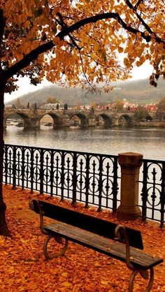 22 Reasons why Czech Republic must be in the TOP of your Bucket List AmonGraf is part of Autumn scenery - 14 Famous Charles Bridge in Autumn Melancholy, Prague Czech Republic Wallpaper Inspiration, Beautiful World, Beautiful Places, Beautiful Pictures, Charles Bridge, Autumn Scenery, Autumn Aesthetic, Nature Aesthetic, Autumn Photography