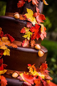 A wonderful Fall Cake  This doesn't look that hard.  It's just different color fondant rolled out and cookie cutters