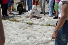 Dipartimento di Scienze della Terra e Geoambientali - Università di Bari - XIV Giornate di Paleontologia - Atti Convegno e Galleria Fotografica - orme di dinosauro (Cava S.Leonardo)