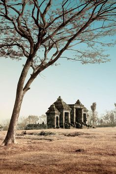 Ratu Boko Palace by nooreva on DeviantArt Yogyakarta, Monument Valley, Palace, Asia, Content, Deviantart, Street, Gallery, Photos