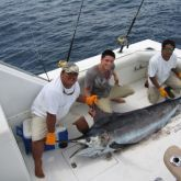 Find information on Cabo fishing charters and sport fishing on the mentioned web link. Hire affordable Cabo fishing charters for world class fishing experience.   #Cabofishingcharters