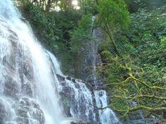 Eco Living Costa Rica: Costa Rica Rainforest Hike