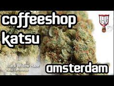 Katsu Coffeeshop is a long established coffeeshop just around the famous Albert Cuypmarkt Best Kept Secret, Sunny Days, Coffee Shop, Amsterdam, Coffee Shops, Loft Cafe, Coffeehouse