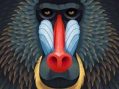 WEBSTA @ anano__ - Mandrill baboon
