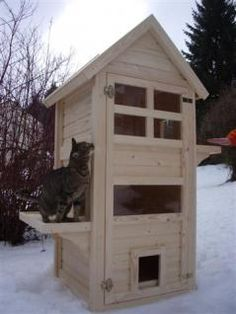 Insulated Feral Cat Shelter Insulated Feral Cat Shelter The post Insulated Feral Cat Shelter appeared first on Katzen. Feral Cat Shelter, Feral Cat House, Outdoor Cat Shelter, Outdoor Cats, Feral Cats, Cat House Outdoor, Cat Shelters, Wooden Cat House, Cat House Diy