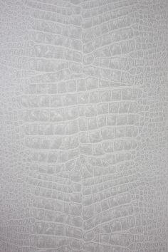 Osborne and Little Croc Wallpaper in grey w6337-01